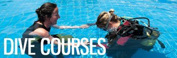 Scuba diving courses in Indonesia - Bunaken, Lembeh, and Nusa Lembongan, Bali