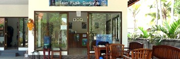 two fish resort nusa lembongan